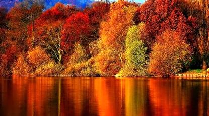 Autumn-Wallpaper